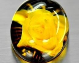 BEAUTIFUL BALTIC NATURAL AMBER ~ 2.60cts ~ BALTIC POLAND