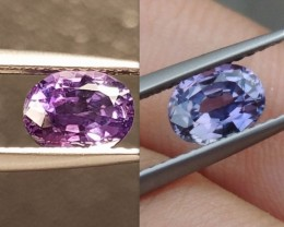 1.07cts, Unheated Color Change Sapphire, Certified