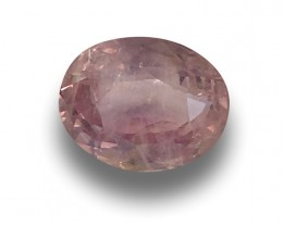 GIA Certified Natural Unheated Pink Sapphire|Loose Gemstone|New| Sri Lanka