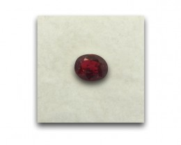 Natural Unheated Pigeon Blood Ruby |Loose Gemstone|New| Mozambique