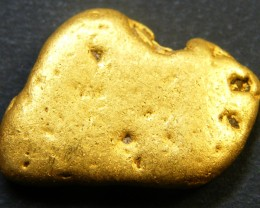 COLLECTORS LARGE  GOLD NUGGET 5.4  GRAMS  LGN 344