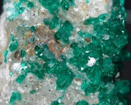 DIOPTASE 13.17 grams - Altyn-Tyube area, Kazakhstan