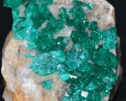 DIOPTASE 13.13 grams - Altyn-Tyube area, Kazakhstan