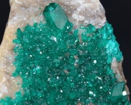 DIOPTASE 26.22 grams - Altyn-Tyube area, Kazakhstan