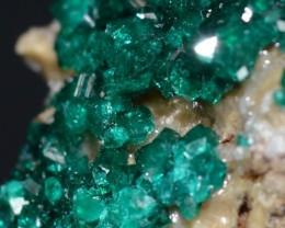 DIOPTASE 23.28 grams - Altyn-Tyube area, Kazakhstan