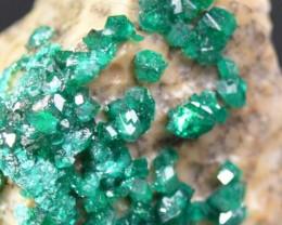 DIOPTASE 18.17 grams - Altyn-Tyube area, Kazakhstan