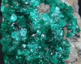 DIOPTASE 17.55 grams - Altyn-Tyube area, Kazakhstan