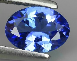 Sparkling Luster - Oval Gem - Natural Blue -Tanzanite NR!!!