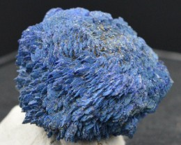 Rare Chessylite - 52,6 grammes - AZURITE - lustrous crystal cluster - Chess