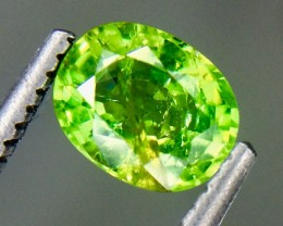 0.75 Crt Natural Tsavorite Garnet Faceted Gemstone (AG 45)