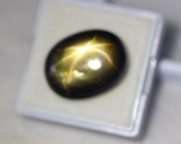23.97ct 6 Rays Black Star Sapphire Bangkaja Lot V2169