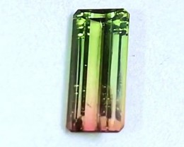 2.50 cts VVS Watermelon Tourmaline - Brazilian - Pink & Green Clarity!