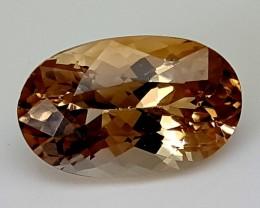 8.65 CTS TOPAZ Best Grade Gemstones JI23