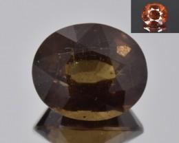 Natural Color Changing Garnet 3.62 Cts Faceted Gemstone