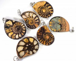 Ammonite Pendant  parcel 6 pcs from Morocco WS348