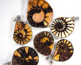 Ammonite Pendant  parcel 6 pcs from Morocco WS350