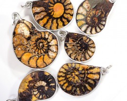 Ammonite Pendant  parcel 6 pcs from Morocco WS352