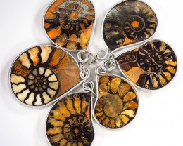 Ammonite Pendant  parcel 6 pcs from Morocco WS354