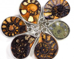 Ammonite Pendant  parcel 6 pcs from Morocco WS355
