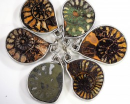 Ammonite Pendant  parcel 6 pcs from Morocco WS356
