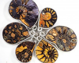 Ammonite Pendant  parcel 6 pcs from Morocco WS357