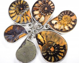 Ammonite Pendant  parcel 6 pcs from Morocco WS358