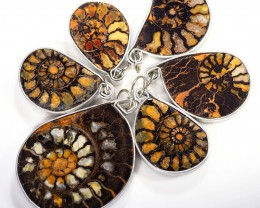 Ammonite Pendant  parcel 6 pcs from Morocco WS359