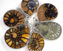 Ammonite Pendant  parcel 6 pcs from Morocco WS361