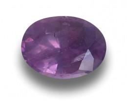 Natural Unheated Purple Sapphire|Loose Gemstone| Sri Lanka New