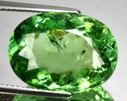 11.75 Cts Natural Mint Green Tourmaline Oval Cut Mozambique