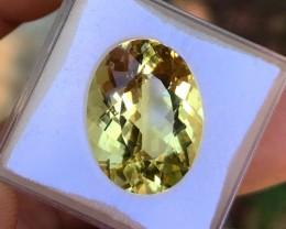10.80 cts VVS+ Golden Beryl - Helidor - Brazilian $1000