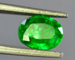 0.75 ct Natural Emerald~Swat