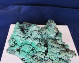 Very Rare Malachite Display Specimen Katanga Copper Crescent Dem. Rep. Cong