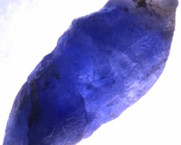 10.35 CTS SAPPHIRE ROUGH SPECIMEN FROM SRI LANKA [STS1428]