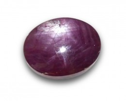 68.26 ct Oval Star Ruby