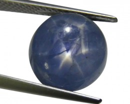 8.98 ct Oval Star Sapphire-$1 No Reserve Auction