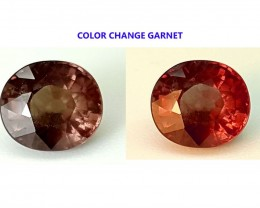 1.10CT COLOR CHANGE GARNET  BEST QUALITY GEMSTONE IGC513