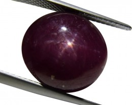 20.84 ct Oval Star Ruby - $1 No Reserve Auction