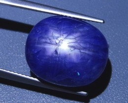 23.13 ct Oval Sapphire