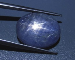 30.31 ct Oval Star Sapphire- $1 No Reserve Auction