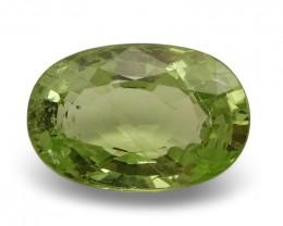 3.18 ct Oval Green Grossularite / Tsavorite Garnet