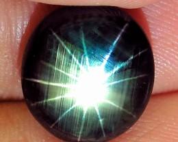 8.50 Carat Thailand 12 Ray Star Sapphire - Superb