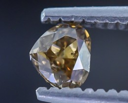 0.30 Crt Diamond Faceted Gemstone (R29 )