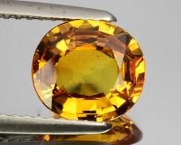 2.02 Cts Natural Corundum Sapphire Golden Yellow Oval Sri Lanka