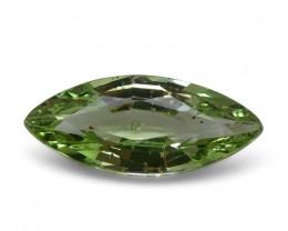 2.91 ct Marquise Green Grossularite / Tsavorite Garnet
