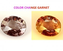 1.05 CT GARNET COLOR CHANGE GEMSTONE IGCCGR16