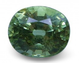 2.05 ct Cushion Green Grossularite / Tsavorite Garnet