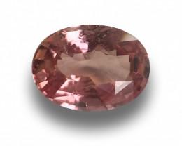 Natural Padparadsha Loose Gemstone New  Sri Lanka