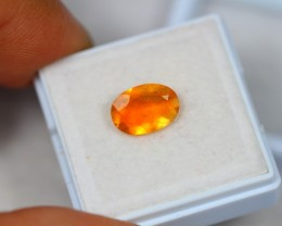 1.12Ct Mexico Fire Opal Oval Cut Lot LZ1300