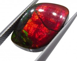 7.20 ct Ammolite Cabochon/Tablet - $1 No Reserve Auction